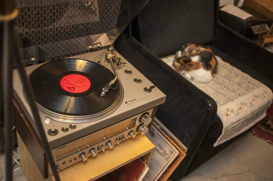 Peradays: record player and ilach