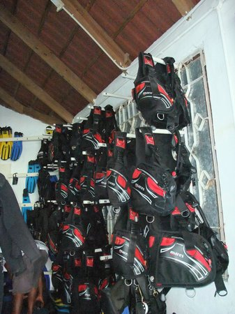 Big Blue Divers: Well organized and well maintained equipment