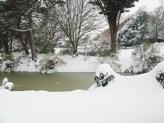 Egerton Park in the snow