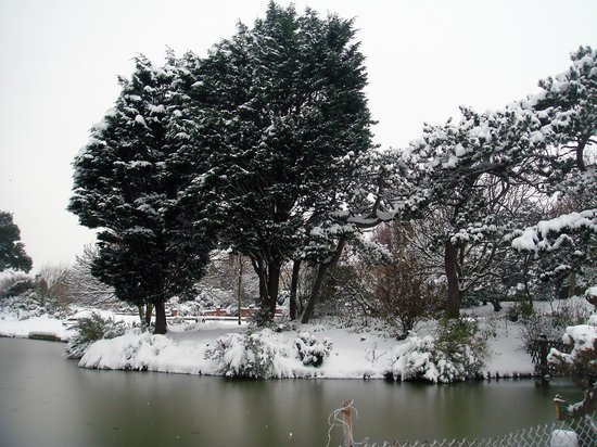 Egerton Park: In the snow