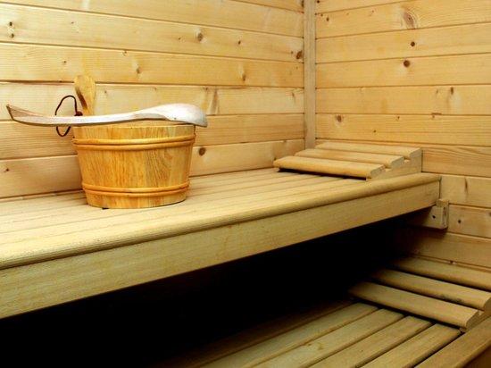 Alojamiento rural El Gigüela: Sauna