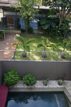 Durban View Guest House: Pool + view on the garden bungalow