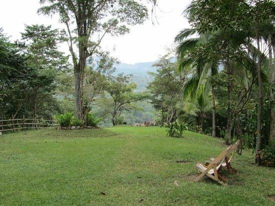 Hacienda San Lucas: Hacienda front lawn