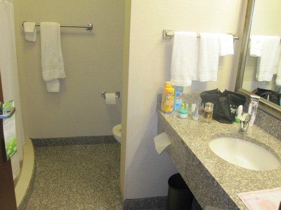 Drury Inn & Suites Orlando: Badezimmer