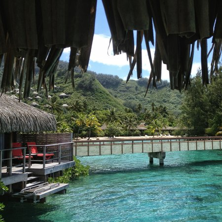InterContinental Resort & Spa Moorea: View from our bungalow