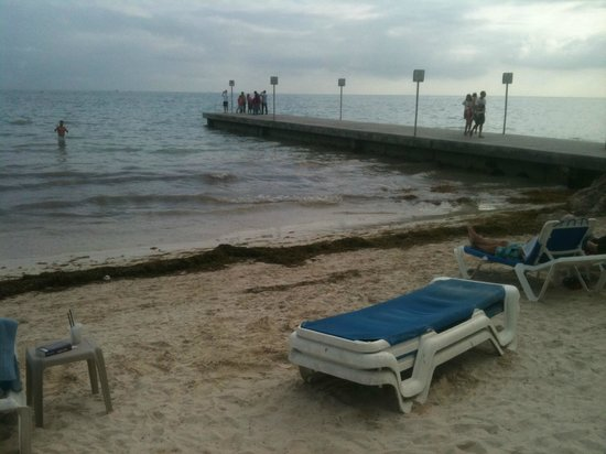 Southernmost Beach Resort: The dirty beach with seaweed...