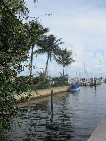 Monty's Coconut Grove: Umgebung Marina
