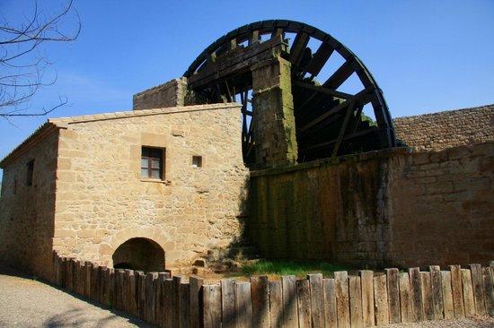 Monasterio De Rueda: Molino de agua