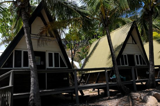 Base Backpackers Magnetic Island: Bungalows