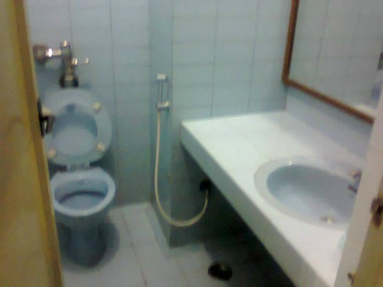 Hotel Padmam: Double room toilet