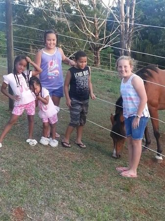 Montville Holiday Apartments: Kids with their new friend