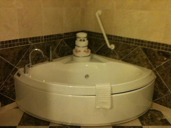 Mullingar Park Hotel: bathroom in honeymoon suite