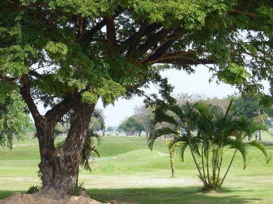 Bangkok Golf Tour - PARADISE PICNIC TOURS