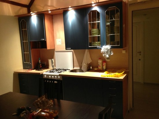 Filippov on Nevskiy Hotel: Кухня в апартаментах