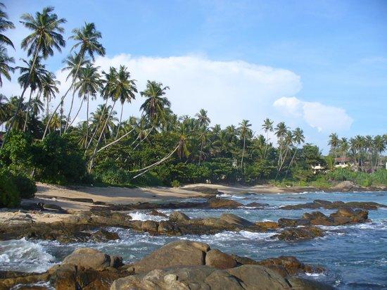 Coco Tangalla: Beach