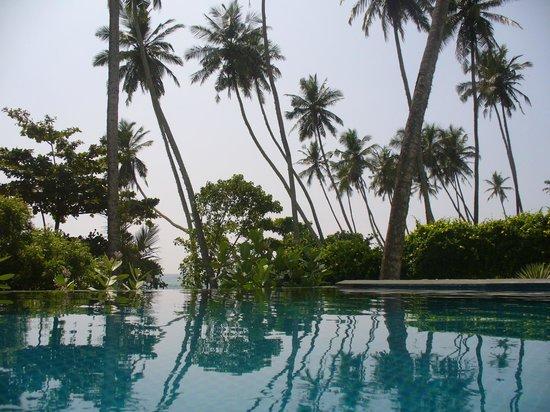 Coco Tangalla: Pool
