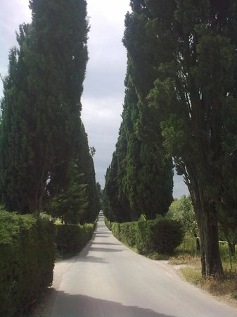 Tenuta Il Corno: The road to the next village