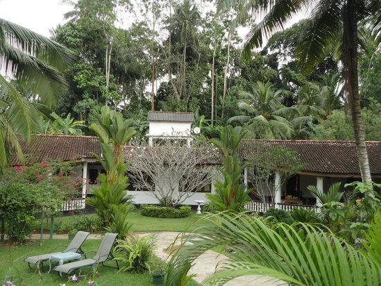 Leijay Resort: Exotic flower garden