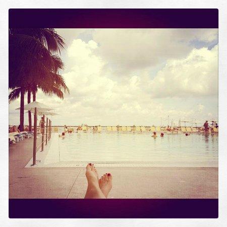ذا ستاندارد سبا ميامي بيتش: Pool 