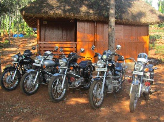 Kolli Hills, India: near the resort room