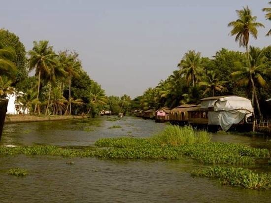 The Zuri Kumarakom: backwaters