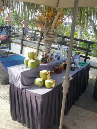 Grand Oasis Cancun: Bar
