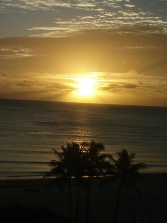Hollywood Beach Tower: Sunrise from the room