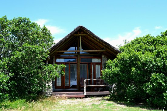 MOSAIC Lagoon Lodge : our chalet