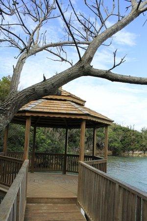 Grotto Bay Beach Resort & Spa: at the hotel
