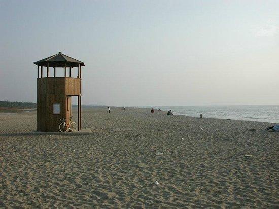 B&B Le Zizzole: La spiaggia di Marina di Vecchiano