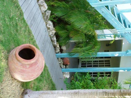 Boardwalk Hotel Aruba: nice garden