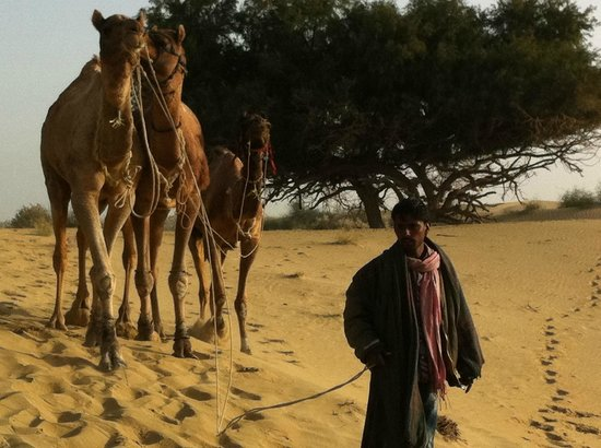 Hotel Deep Mahal: Salim - best Camel Guide Ever!