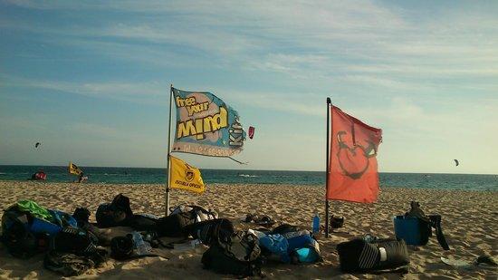 Free your Mind: FYM Kite-Base am Strand