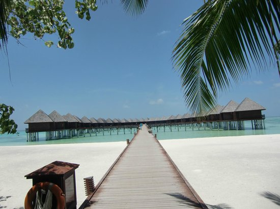 Olhuveli Beach & Spa Maldives: water villas