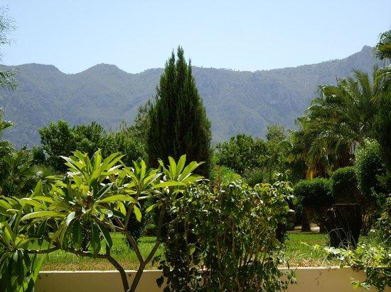 Mountain View Hotel & Villas: trädgård med berg i bakgrund