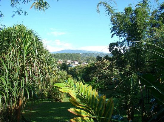 Pura Vida Hotel: View over garden and volcano