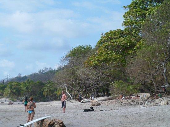 Hotel Manalá: playa