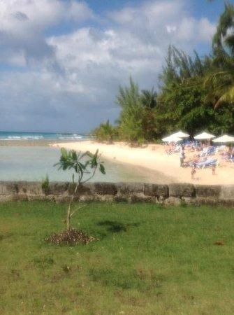 سافانا بيتش هوتل: the savannah beach. 