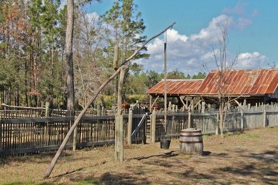 Florida Agricultural Museum: Old well