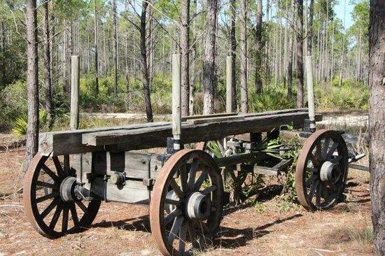 Florida Agricultural Museum: Timber wagon