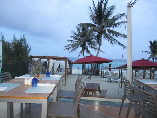 Azul Fives Hotel By Karisma: View from one of the restaurants