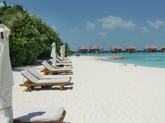 Adaaran Prestige Vadoo: playa