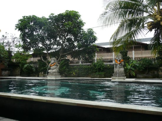 Ubud Aura Retreat: Pool
