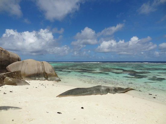 Anse Source D'Argent: Dream place