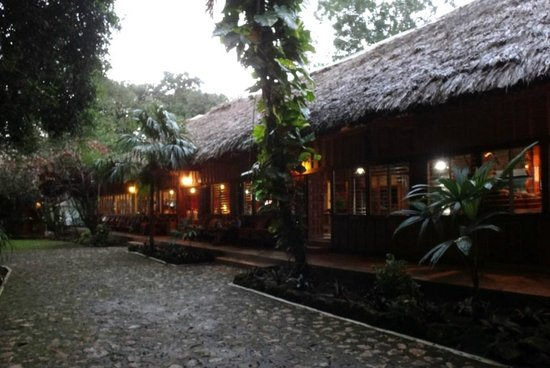 Jungle Lodge Hotel: Reception and dining area
