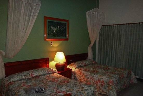 Jungle Lodge: Dark rooms