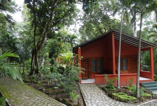 Jungle Lodge照片