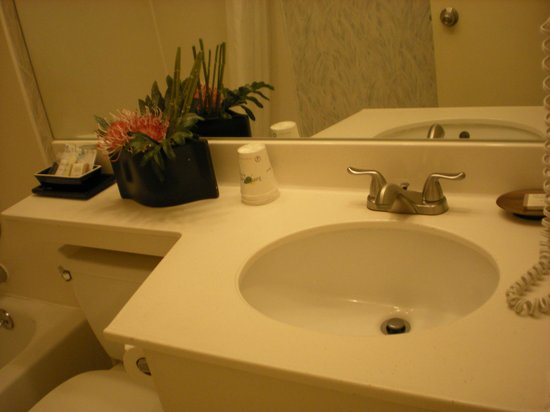 Flushing Central Hotel: Bagno