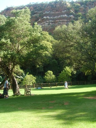 Roodepoort, Afrique du Sud: Lush green afternoon