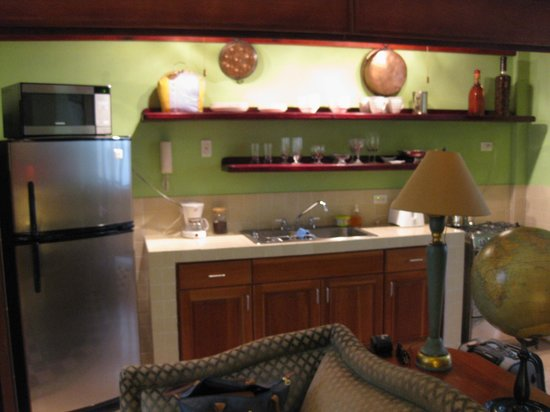 Los Cuatro Tulipanes: Kitchen in our suite
